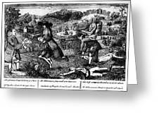 Franklin: Cartoon, 1764 Greeting Card by Granger