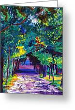 French Country Road Greeting Card by David Lloyd Glover