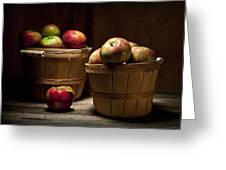 Fresh From The Orchard IIi Greeting Card by Tom Mc Nemar