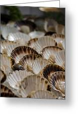 Fresh From The Sea Greeting Card by Heather Applegate