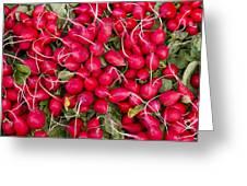 Fresh Red Radishes Greeting Card by John Trax