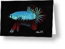 Frilled Blue Moonstone Greeting Card by Kayleigh Semeniuk