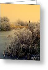 Frost Greeting Card by Linsey Williams