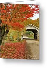 Fuller Bridge Greeting Card by Deborah Benoit