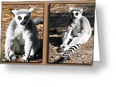 Funny Lemurs Greeting Card by Svetlana Sewell