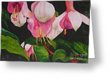 Fuschia Pink Passion Greeting Card by Kimberlee Weisker