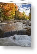 Gale River - White Mountains New Hampshire Greeting Card by Erin Paul Donovan