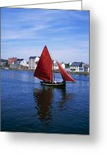 Galway, Co Galway, Ireland Galway Greeting Card by The Irish Image Collection