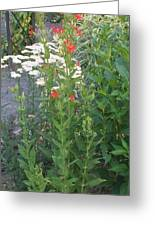 Garden Flowers Mix  In Nature Greeting Card by Thelma Harcum