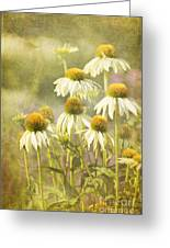 Garden Party Greeting Card by Reflective Moment Photography And Digital Art Images