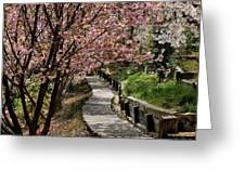 Garden Path No. 2 Greeting Card by Joe Bonita