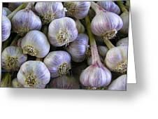 Garlic Bulbs Greeting Card by Jen White