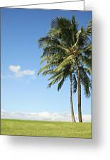 Generic Palm Tree Greeting Card by Brandon Tabiolo - Printscapes