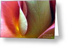Genuine Greeting Card by Stacey Zimmerman