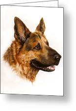 German Sheppard Greeting Card by Patricia Ivy