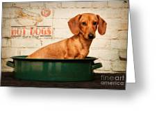 Get Your Hot Dogs Greeting Card by Susan Candelario