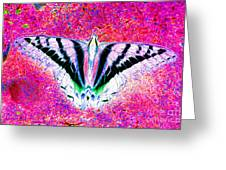 Ghost Butterfly Greeting Card by Nick Gustafson