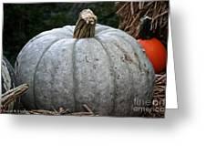 Ghost Pumpkin Greeting Card by Susan Herber