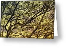 Ghosts of Crape Myrtles Greeting Card by Judi Bagwell