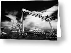 Giant Harland And Wolff Cranes Goliath Amd Samson With Wind Turbine Blades At Shipyard Titanic Greeting Card by Joe Fox