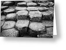 Giants Causeway Stones Northern Ireland Greeting Card by Joe Fox
