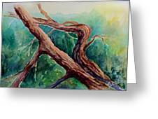Gnarly Trunk Greeting Card by Merv Scoble