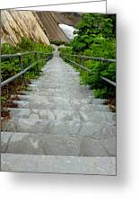 Going Down Greeting Card by Mark Dodd