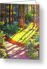 Gold Creek Trail Greeting Card by Mary McInnis