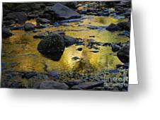 Golden Fall Reflection Greeting Card by Heather Kirk