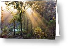 Golden Rays Greeting Card by Kristin Elmquist