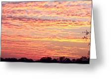 Golden Sunset 002 Greeting Card by George Bostian