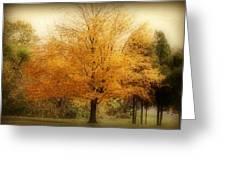 Golden Tree Greeting Card by Sandy Keeton