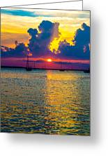 Golden Waters Greeting Card by Shannon Harrington