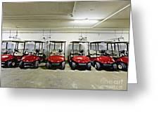 Golf Cart Parking Garage Greeting Card by Skip Nall