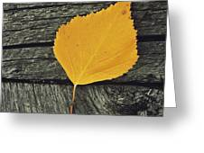 Gone For Good Greeting Card by Priska Wettstein