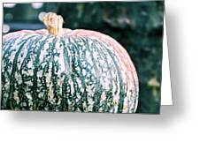GORGEOUS GOURD Greeting Card by JAMART Photography
