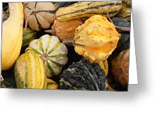 Gourds Greeting Card by Kimberly Perry