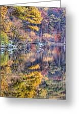 Grand Reflections Greeting Card by JC Findley