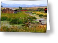 Grant Khors Ranch Deer Lodge  Mt Greeting Card by Marty Koch