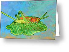 Grasshopper Greeting Card by Mary Ogle