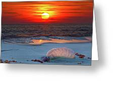 Grayton Beach Sunset IIi Greeting Card by Charles Warren