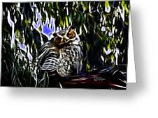 Great Horned Owl - 4228 - Fractal - S Greeting Card by James Ahn