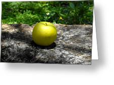 Green Apple Greeting Card by David Lee Thompson
