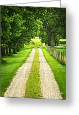 Green Farm Road Greeting Card by Elena Elisseeva