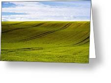 Green Hill Greeting Card by Svetlana Sewell