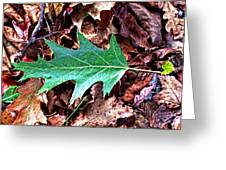 Green Leaf Greeting Card by Mark Jordan