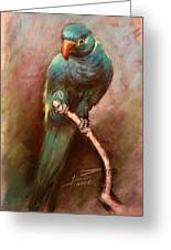 Green Parrot Greeting Card by Ylli Haruni
