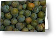 Green Plums Fill A Bin Outside A Local Greeting Card by Heather Perry