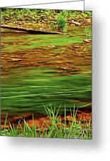 Green River Greeting Card by Elena Elisseeva