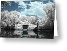 Green River Ir Greeting Card by Amber Flowers